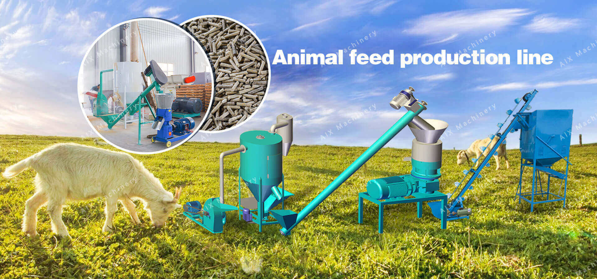 Small feed pellet production line